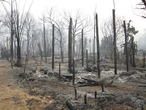 2013-03-23-news-s1-fire-burnt-area-300x225